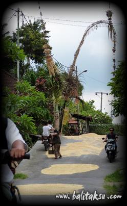 indonesia-bagus-seni-12