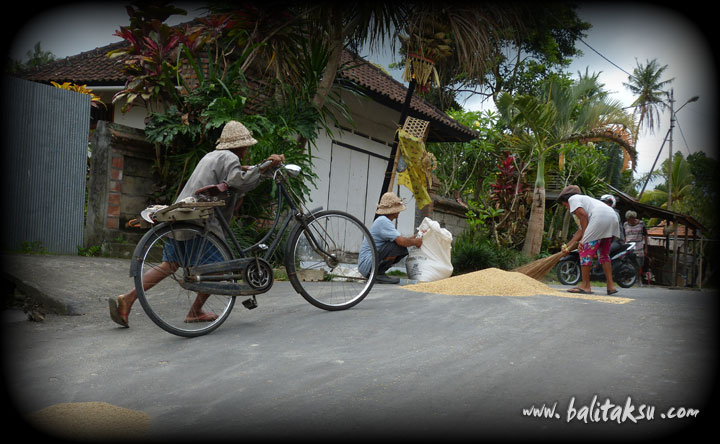 indonesia-bagus-seni-24