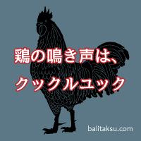 バリ島インドネシアでは鶏の鳴き声はクックルユック(kukuruyuk)
