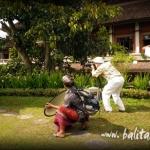 gongsanglahsun2011-18
