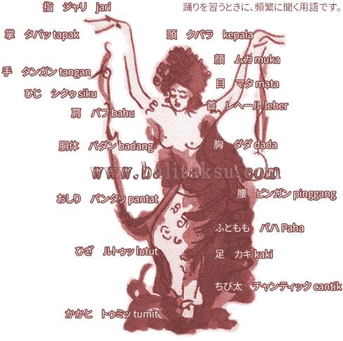 バリ舞踊図鑑 からだの名称図